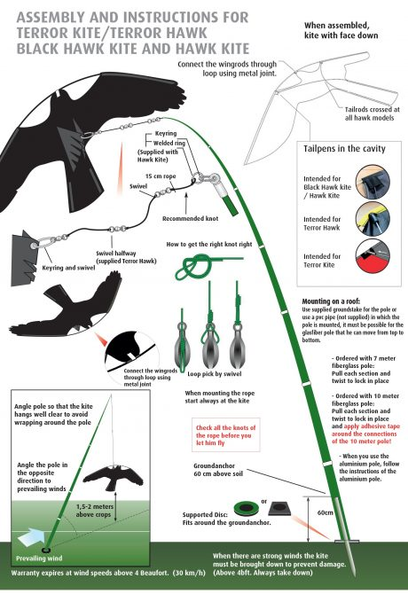 bird kite Instruction
