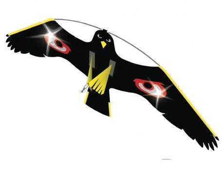 anti bird kite