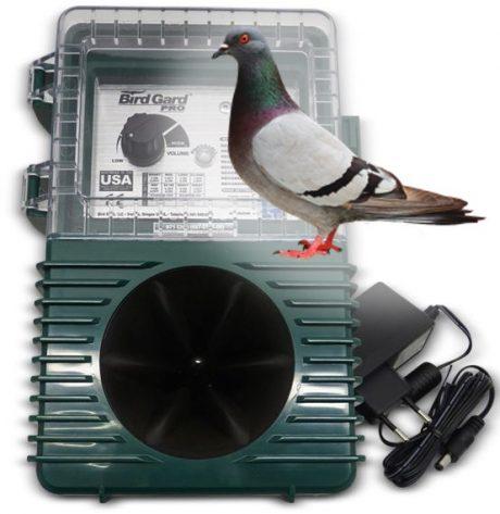 Bird control for Pigeon Bird Gard Pro