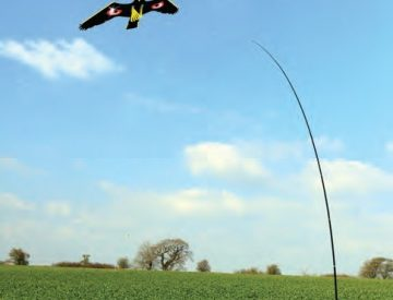 bird deterrent kite