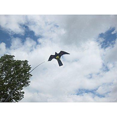 bird scarer kite