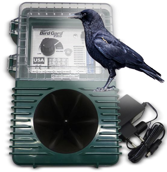 sonic bird repellent for crow