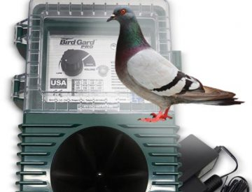 Sonic bird repellent for Pigeon