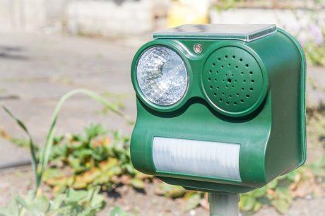 Scheuche mit Solarbatterie und Bewegungssensor
