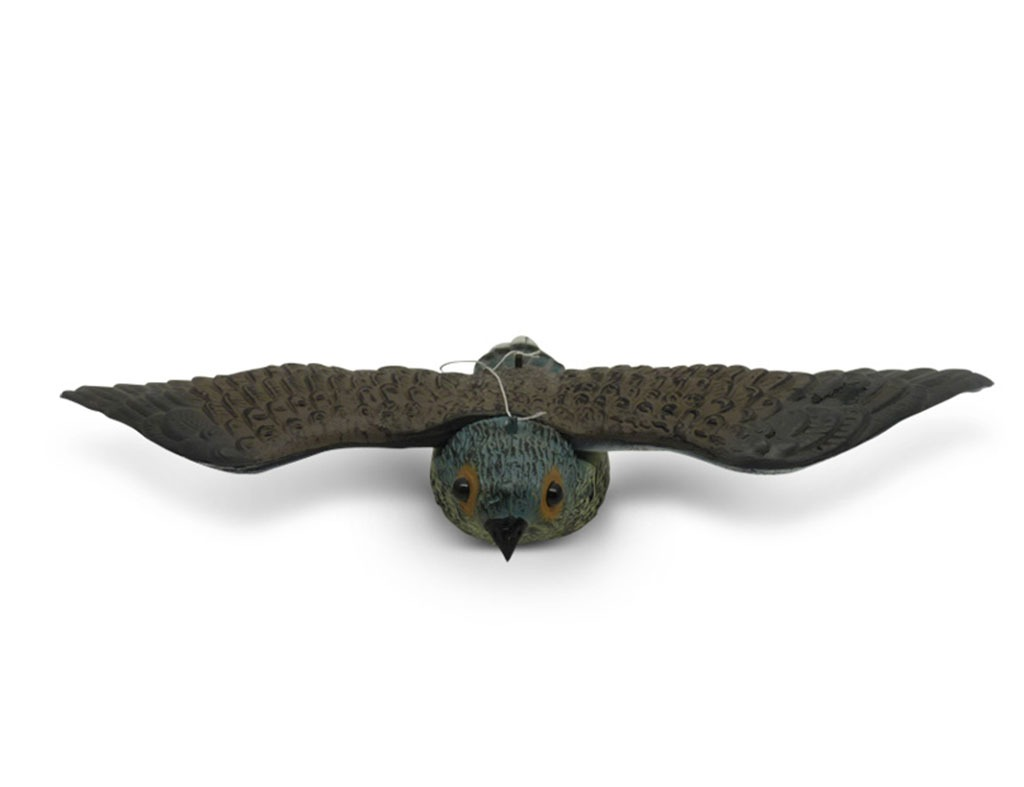 kestrel bird repellent