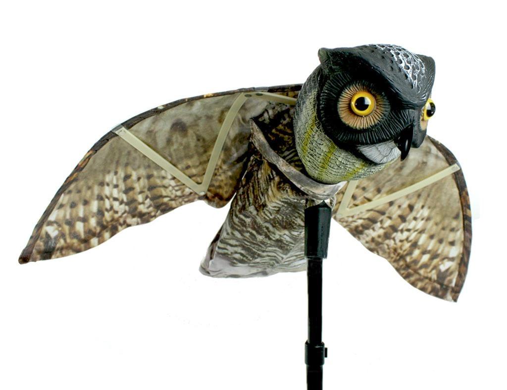 owl to scare birds