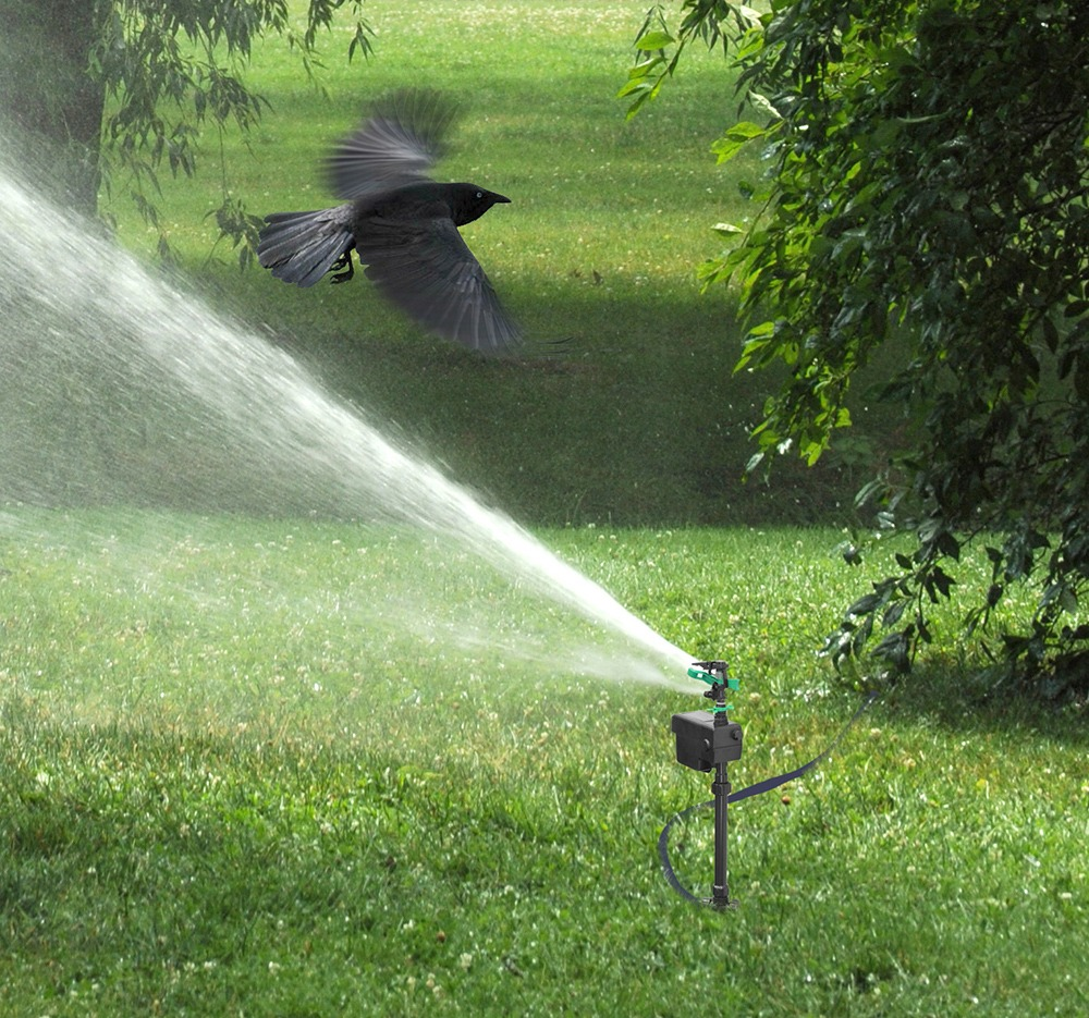 Motion Activated Sprinkler with Day and Night Detection Modes