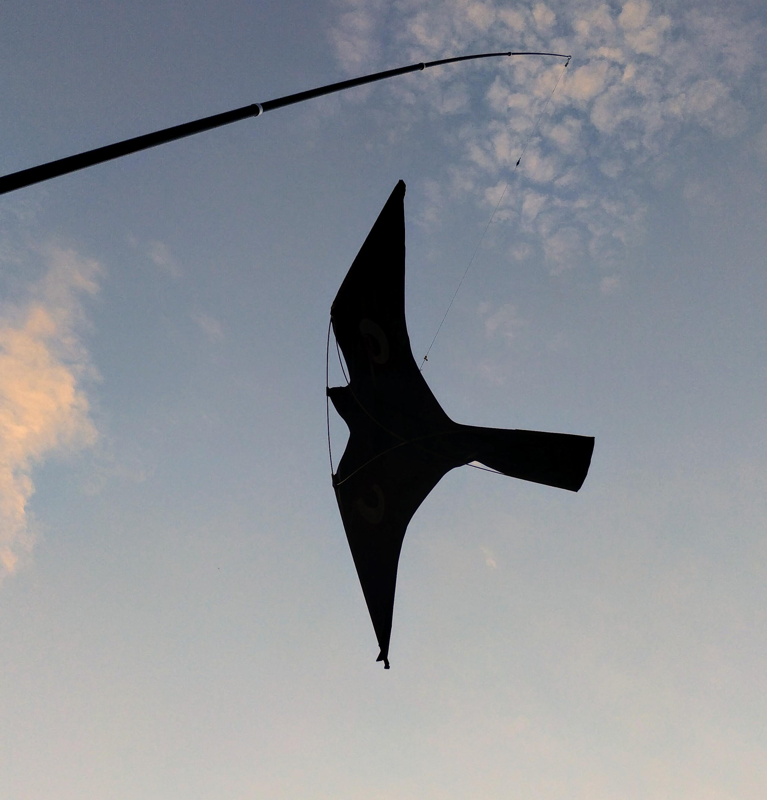 bird repellent kite