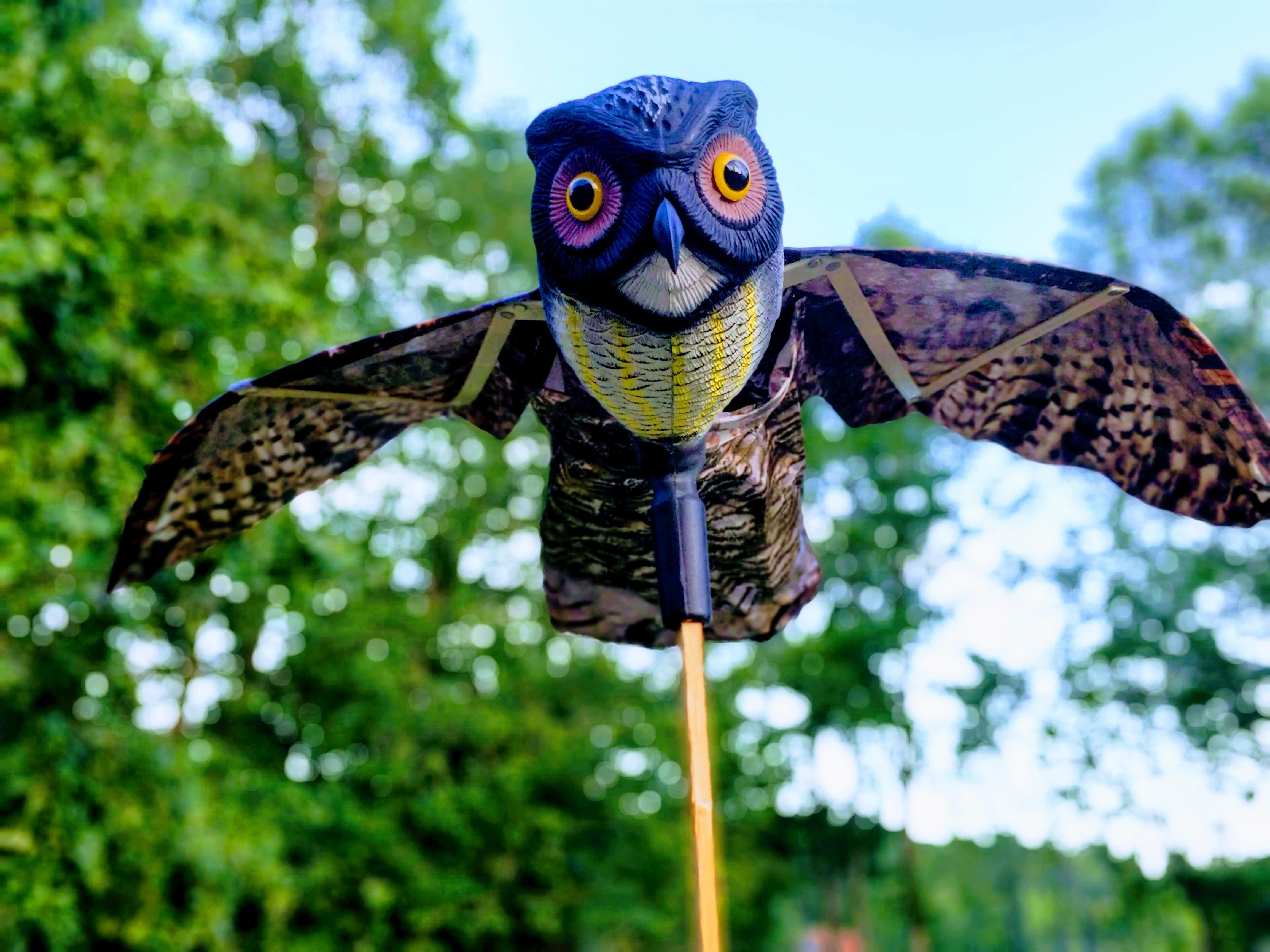 ... Owl Figure Bird Repellent For Garden