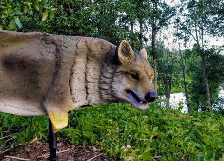 wolf figure for bird control