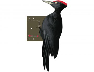 Black Woodpecker Repellent