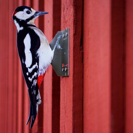woodpecker repellent for walls